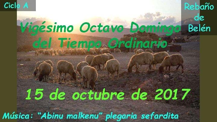 Ciclo A Vigésimo Octavo Domingo del Tiempo Ordinario Rebaño de Belén 15 de octubre