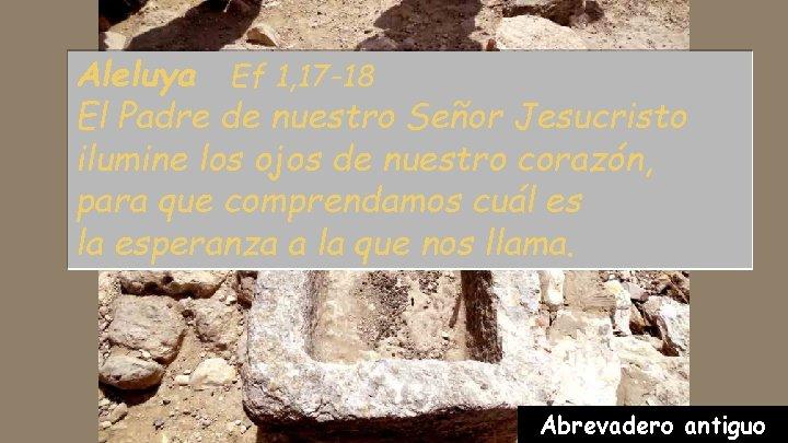 Aleluya Ef 1, 17 -18 El Padre de nuestro Señor Jesucristo ilumine los ojos