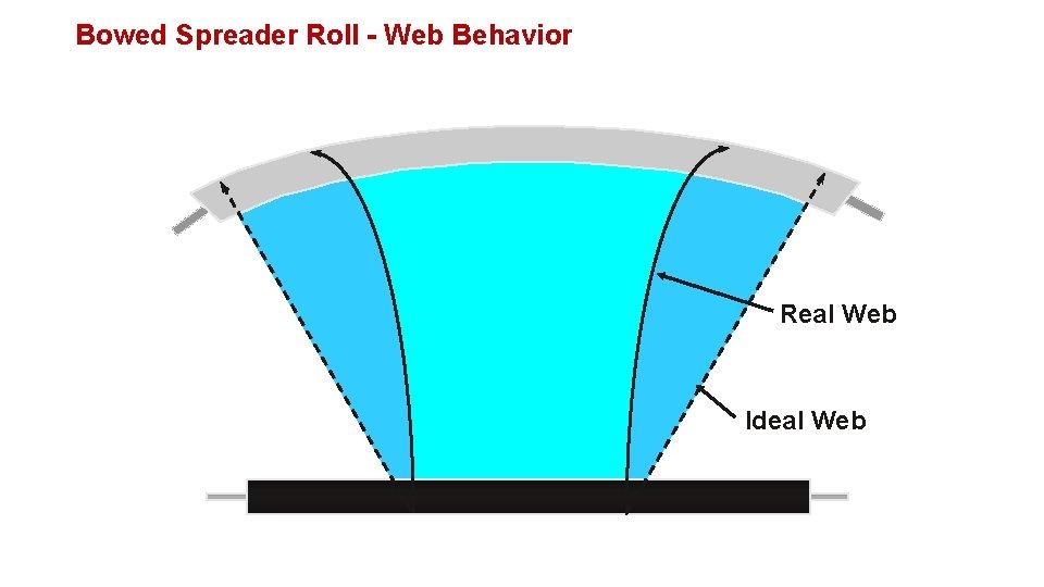 Bowed Spreader Roll - Web Behavior Real Web Ideal Web