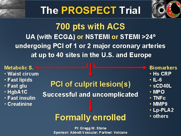 The PROSPECT Trial 700 pts with ACS UA (with ECGΔ) or NSTEMI or STEMI