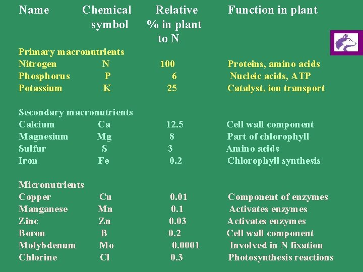 Plant Nutrition Plant Nutrition 1 What Is Meant