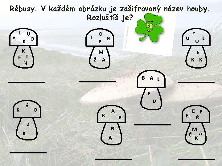 Rébusy. V každém obrázku je zašifrovaný název houby. Rozluštíš je? A L U B