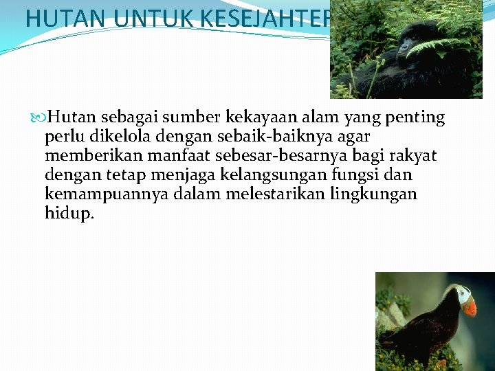 HUTAN UNTUK KESEJAHTERAAN Hutan sebagai sumber kekayaan alam yang penting perlu dikelola dengan sebaik-baiknya