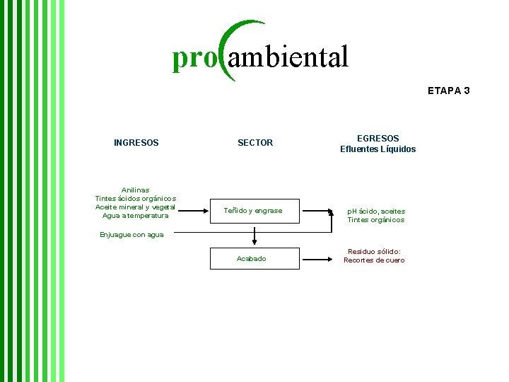 pro ambiental ETAPA 3 INGRESOS Anilinas Tintes ácidos orgánicos Aceite mineral y vegetal Agua