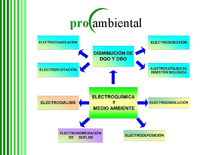 pro ambiental