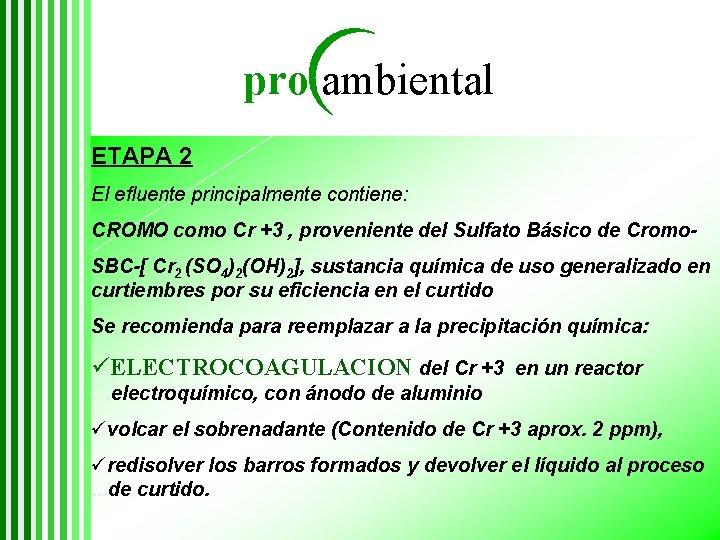pro ambiental ETAPA 2 El efluente principalmente contiene: CROMO como Cr +3 , proveniente