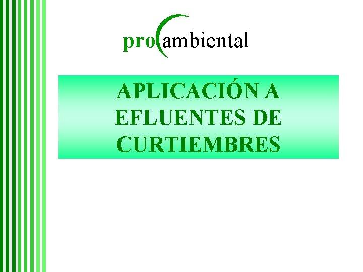pro ambiental APLICACIÓN A EFLUENTES DE CURTIEMBRES