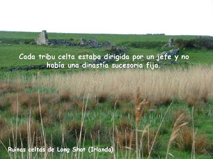 Cada tribu celta estaba dirigida por un jefe y no había una dinastía sucesoria