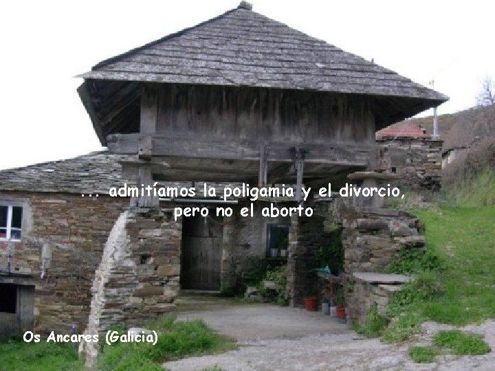 . . . admitíamos la poligamia y el divorcio, pero no el aborto Os