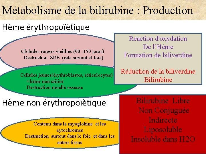 Métabolisme de la bilirubine : Production Hème érythropoïètique Globules rouges vieillies (90 -150 jours)