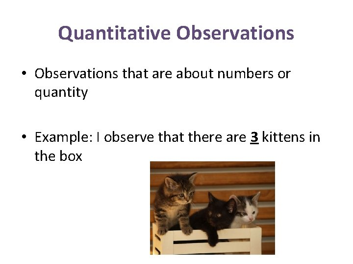 Quantitative Observations • Observations that are about numbers or quantity • Example: I observe