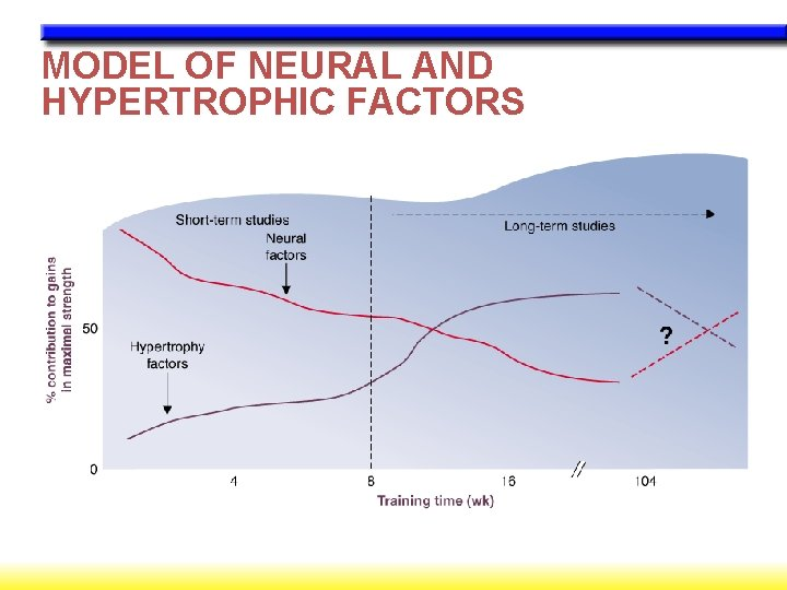 MODEL OF NEURAL AND HYPERTROPHIC FACTORS