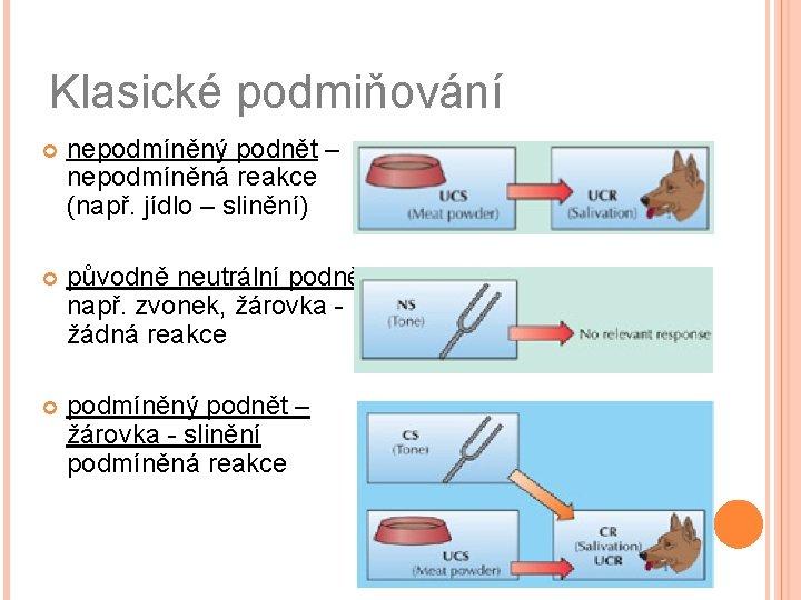 Klasické podmiňování nepodmíněný podnět – nepodmíněná reakce (např. jídlo – slinění) původně neutrální podnět,