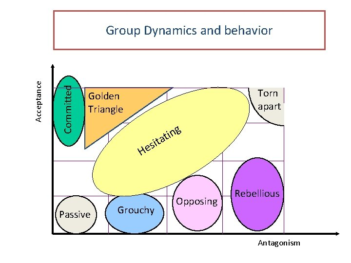 Committed Acceptance Group Dynamics and behavior Torn apart Golden Triangle g n i at