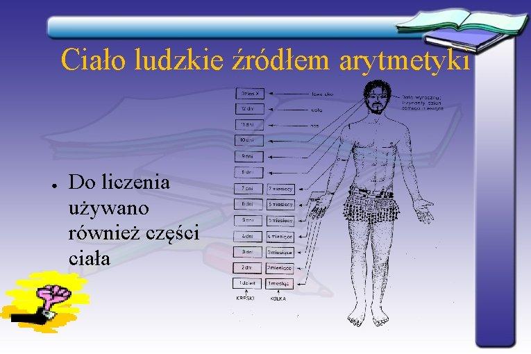 Ciało ludzkie źródłem arytmetyki ● Do liczenia używano również części ciała