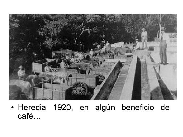 • Heredia 1920, en algún beneficio de café…