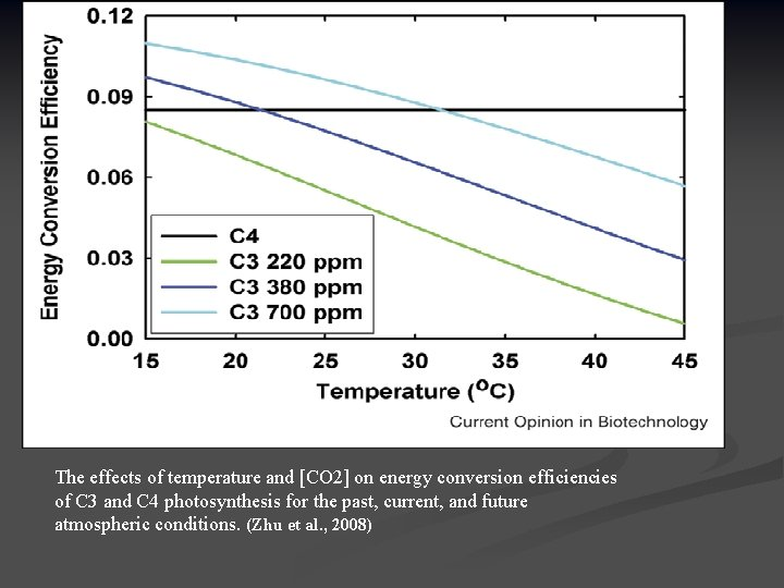 The effects of temperature and [CO 2] on energy conversion efficiencies of C 3