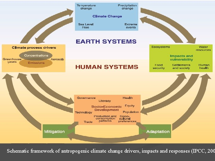 Schematic framework of antropogenic climate change drivers, impacts and responses (IPCC, 200