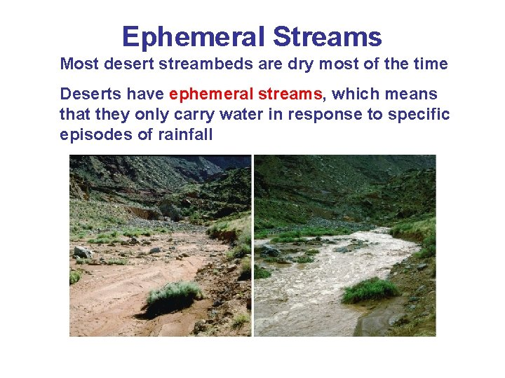 Ephemeral Streams Most desert streambeds are dry most of the time Deserts have ephemeral