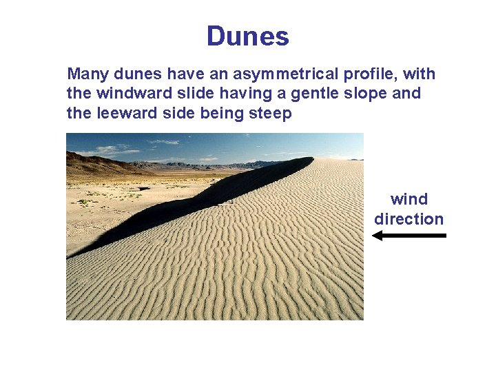 Dunes Many dunes have an asymmetrical profile, with the windward slide having a gentle