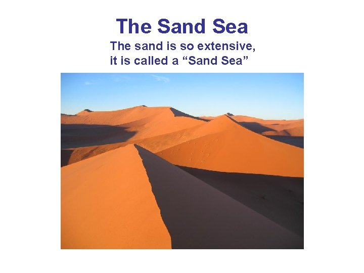 "The Sand Sea The sand is so extensive, it is called a ""Sand Sea"""
