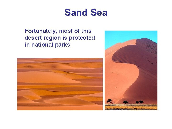 Sand Sea Fortunately, most of this desert region is protected in national parks