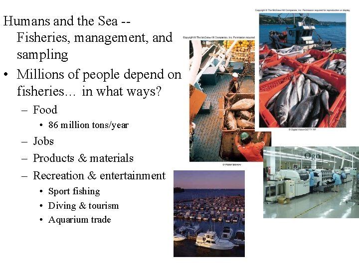Humans and the Sea -Fisheries, management, and sampling • Millions of people depend on