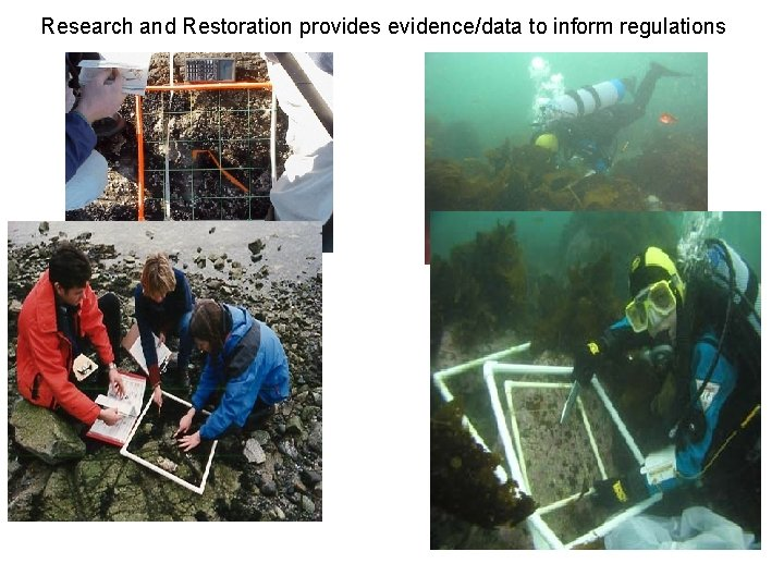 Research and Restoration provides evidence/data to inform regulations