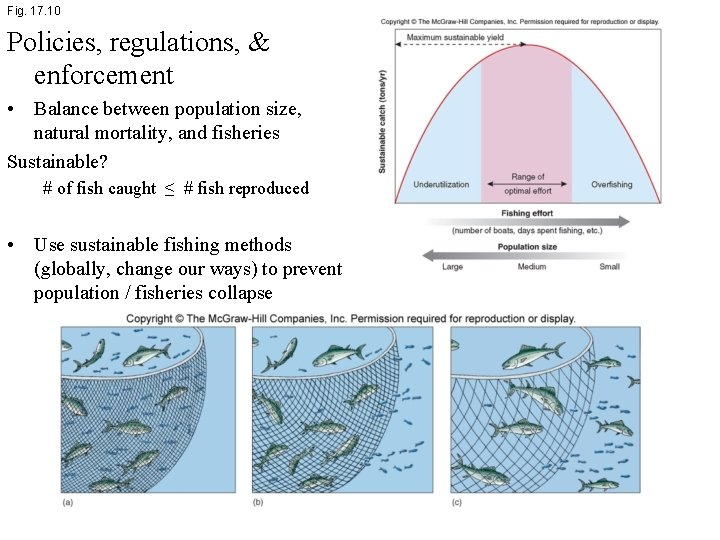 Fig. 17. 10 Policies, regulations, & enforcement • Balance between population size, natural mortality,