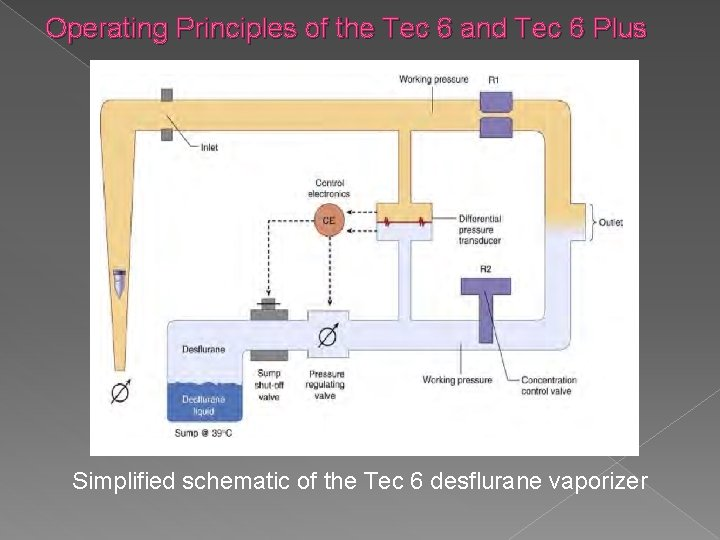 Operating Principles of the Tec 6 and Tec 6 Plus Simplified schematic of the