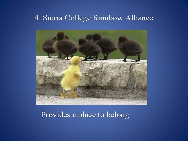 4. Sierra College Rainbow Alliance Provides a place to belong