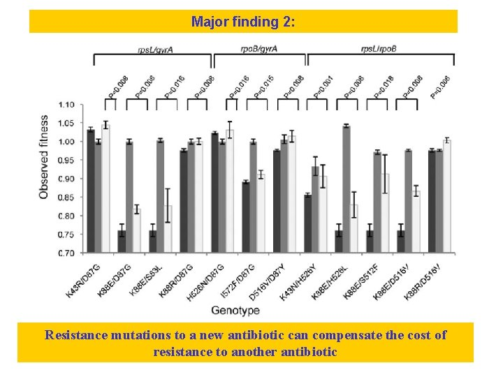 Major finding 2: Resistance mutations to a new antibiotic can compensate the cost of