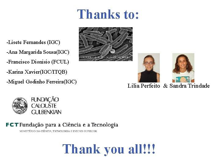 Thanks to: -Lisete Fernandes (IGC) -Ana Margarida Sousa(IGC) -Francisco Dionisio (FCUL) -Karina Xavier(IGC/ITQB) -Miguel