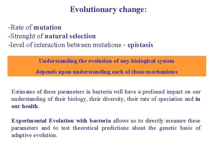 Evolutionary change: -Rate of mutation -Strenght of natural selection -level of interaction between mutations