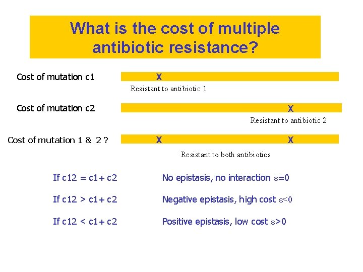 What is the cost of multiple antibiotic resistance? Cost of mutation c 1 X