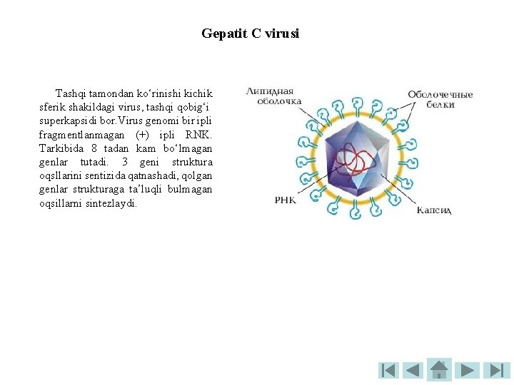 Quturish virusi, What is papilloma