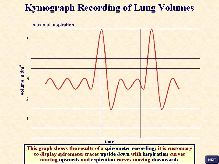 Kymograph Recording of Lung Volumes time This graph shows the results of a spirometer