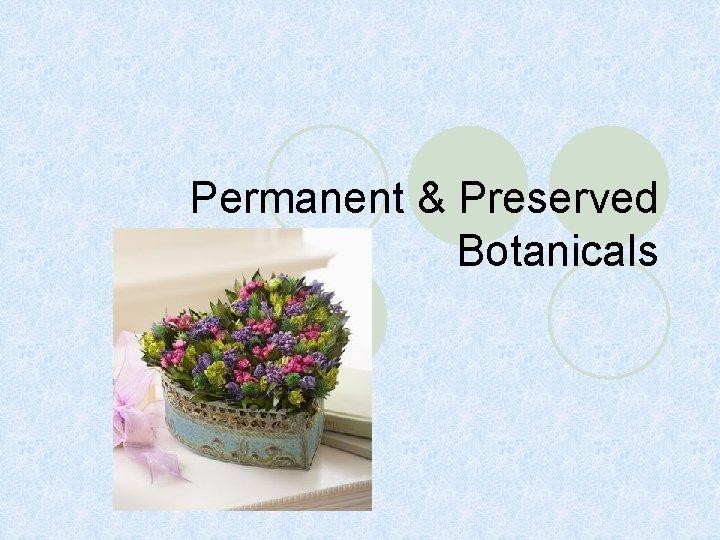 Permanent & Preserved Botanicals