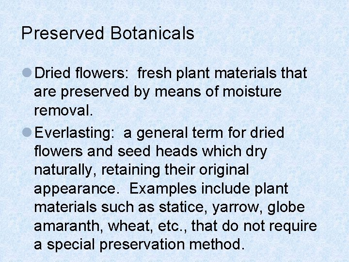 Preserved Botanicals l Dried flowers: fresh plant materials that are preserved by means of