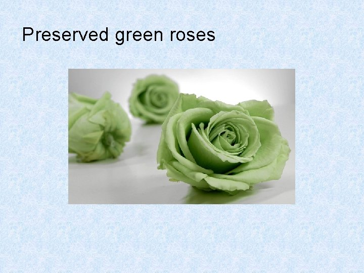 Preserved green roses