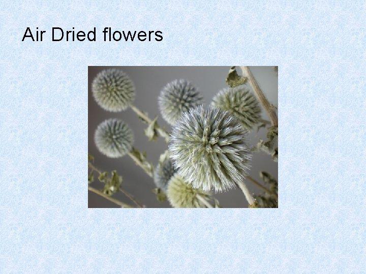 Air Dried flowers