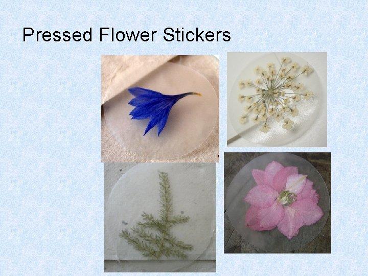 Pressed Flower Stickers