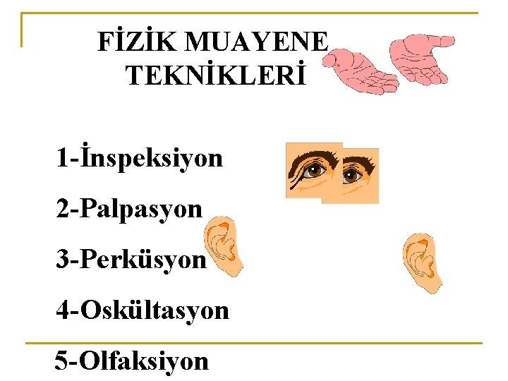 FİZİK MUAYENE TEKNİKLERİ 1 -İnspeksiyon 2 -Palpasyon 3 -Perküsyon 4 -Oskültasyon 5 -Olfaksiyon