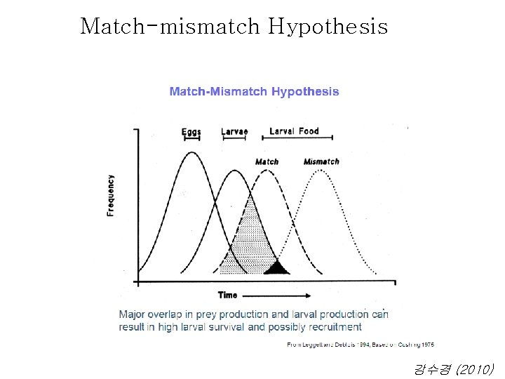 Match-mismatch Hypothesis From Houde 2002 강수경 (2010)
