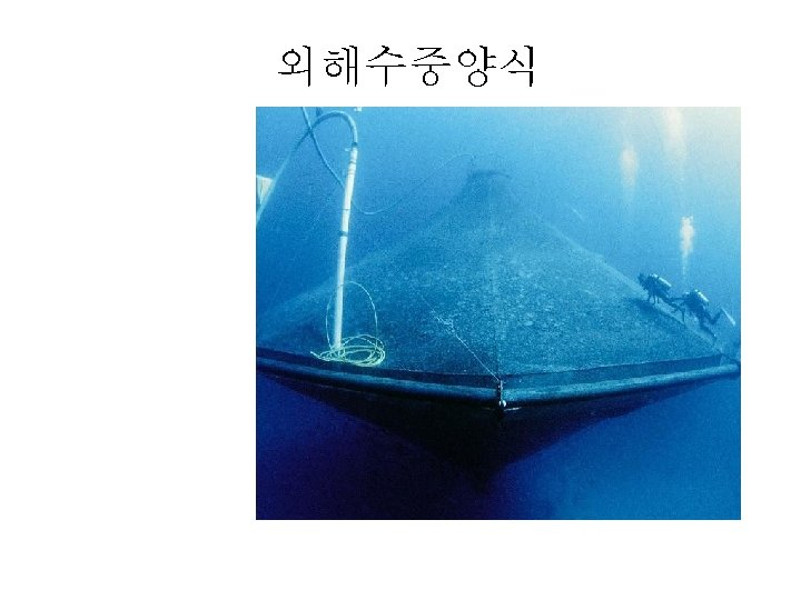 Submersible cage: Ocean Spar Sea Station 외해수중양식