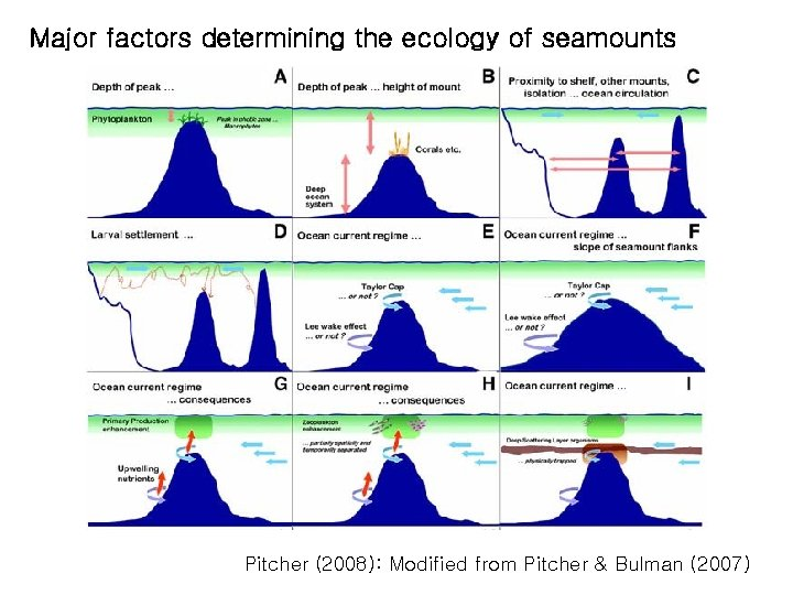 Major factors determining the ecology of seamounts Pitcher (2008): Modified from Pitcher & Bulman