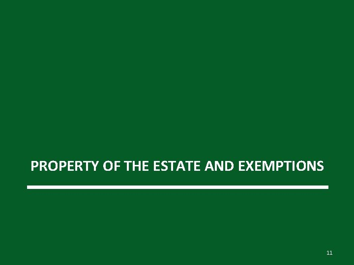 PROPERTY OF THE ESTATE AND EXEMPTIONS 11