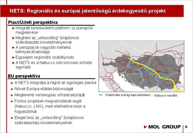 diverzifikációs perspektíva)