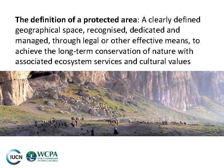 The definition of a protected area: A clearly defined geographical space, recognised, dedicated and