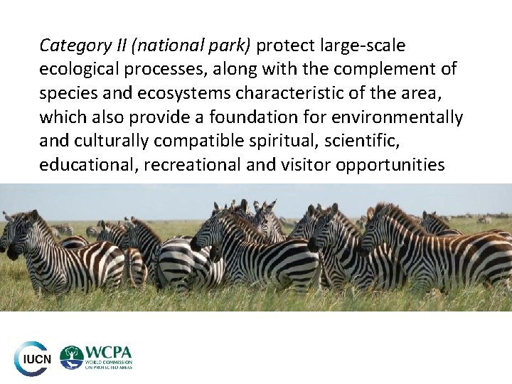 Category II (national park) protect large-scale ecological processes, along with the complement of species